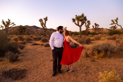 adventure wedding in joshua tree
