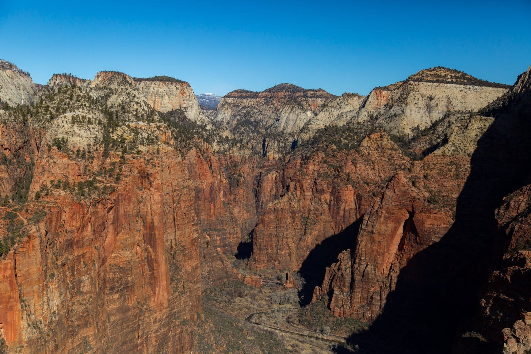 the view of the narrows from angels landing in zion national park. Zion is a greate place to elope in southern utah